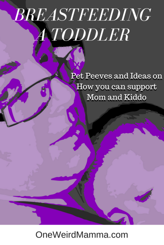Breastfeeding a Toddler - Pet Peeves and Ideas on How you can support Mom & Kiddo